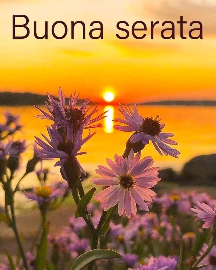 "Carla on Twitter: ""Buona serata Nicoletta🙋♀️… """