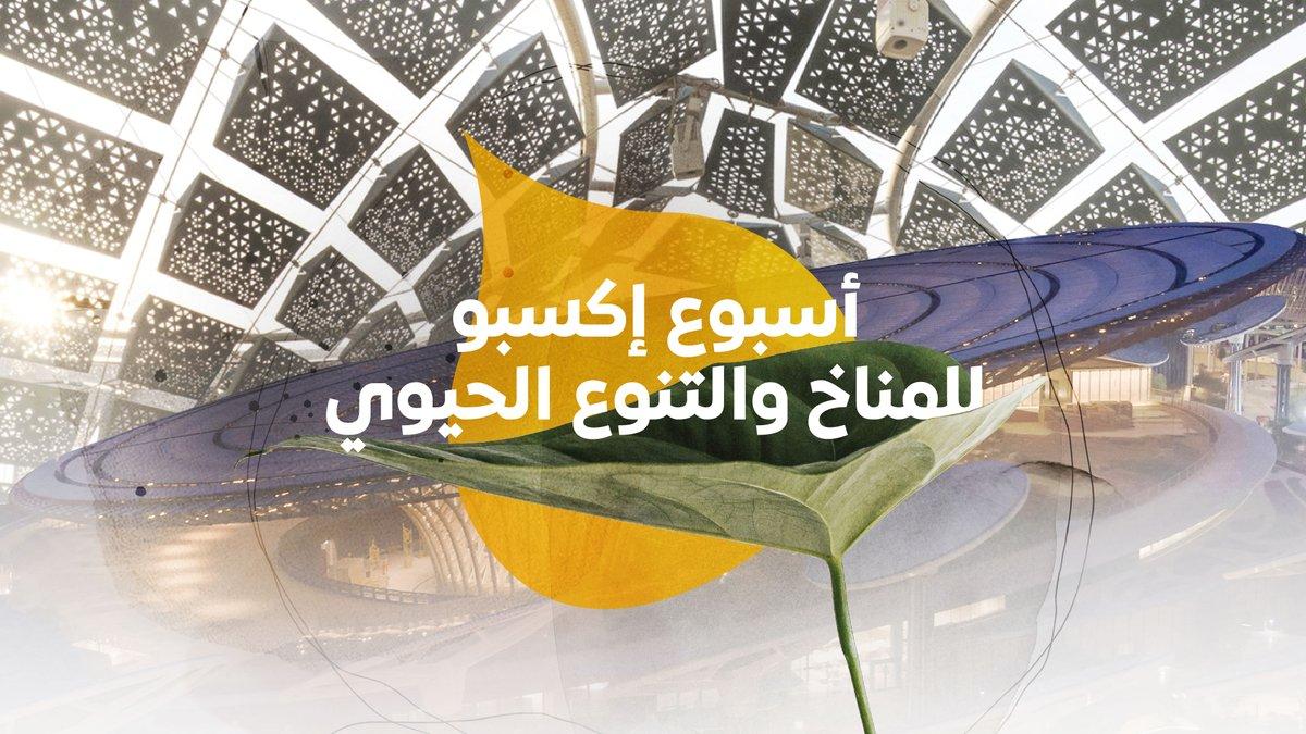 فن العمارة المستدام وتعافي محيطاتنا موضوعان من عدة موضوعات ناقشها اليوم الأول من أسبوع إكسبو للمناخ والتنوع الحيوي 🌱. انضموا إلينا مجددا غدا لاستكشاف المزيد من الحلول من أجل كوكب أكثر صحة. تفضلوا بزيارة الرابط الآتي https://t.co/11aywIT4jg #إكسبو2020 #دبي #الإمارات https://t.co/a1YkEHAWAX