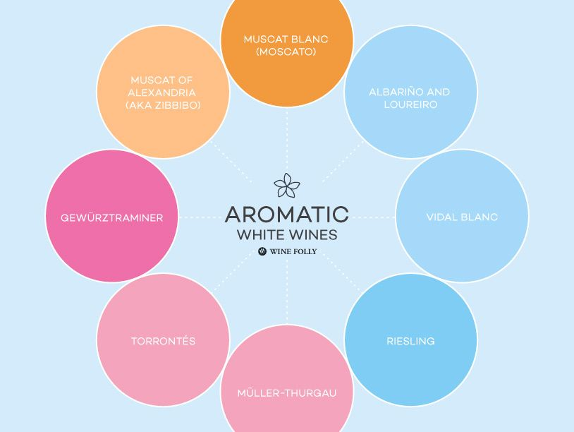 What's your favorite aromatic wine? https://t.co/cLIIpFVpqs https://t.co/AOjmAyQRnZ