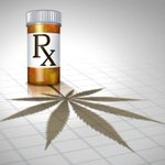 Image for the Tweet beginning: #cannabis #marijuana #weed Massachusetts moves