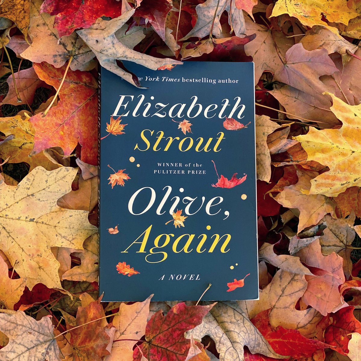 Because today wasn't eventful enough already,  OLIVE, AGAIN is now out in paperback  https://t.co/OhYq8bGa8P https://t.co/cCAuOBgo4s