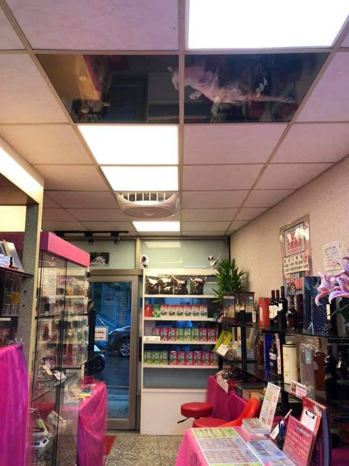 友達がお店の天井を猫用に改造したら監視されるようになってしまった