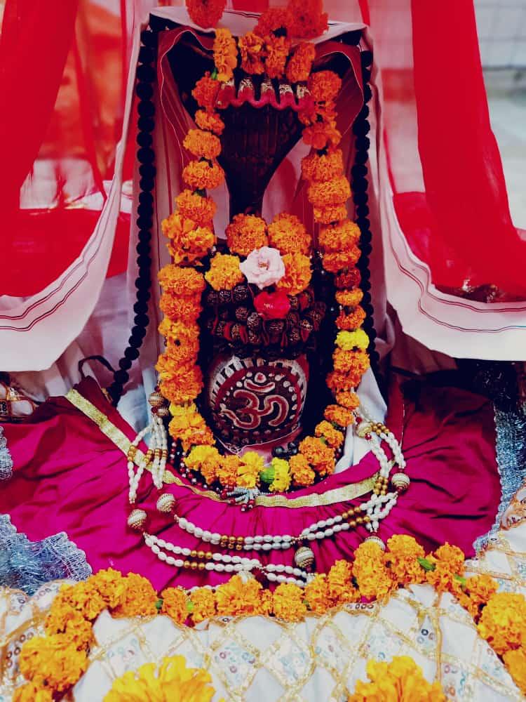 हर हर महादेव  आज का श्रृंगार  #HarHarMahadev #om .#namashivaya  #har #har  #mahadev_har  #ambikadevi_ji  #derababamangalnath #ambikadevimandir #kharar  #Mohali #punjab  @MYogiRamnath #myogiramnath https://t.co/wOO3iGbTAM