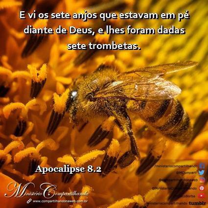 23/10 #bomdia #buongiorno #goodmorning #buenosdias #Brasil #bíblia #bibbia #bible #biblia #compartilhandonaweb #ministeriocompartilhando hello https://t.co/PCX2mevkku