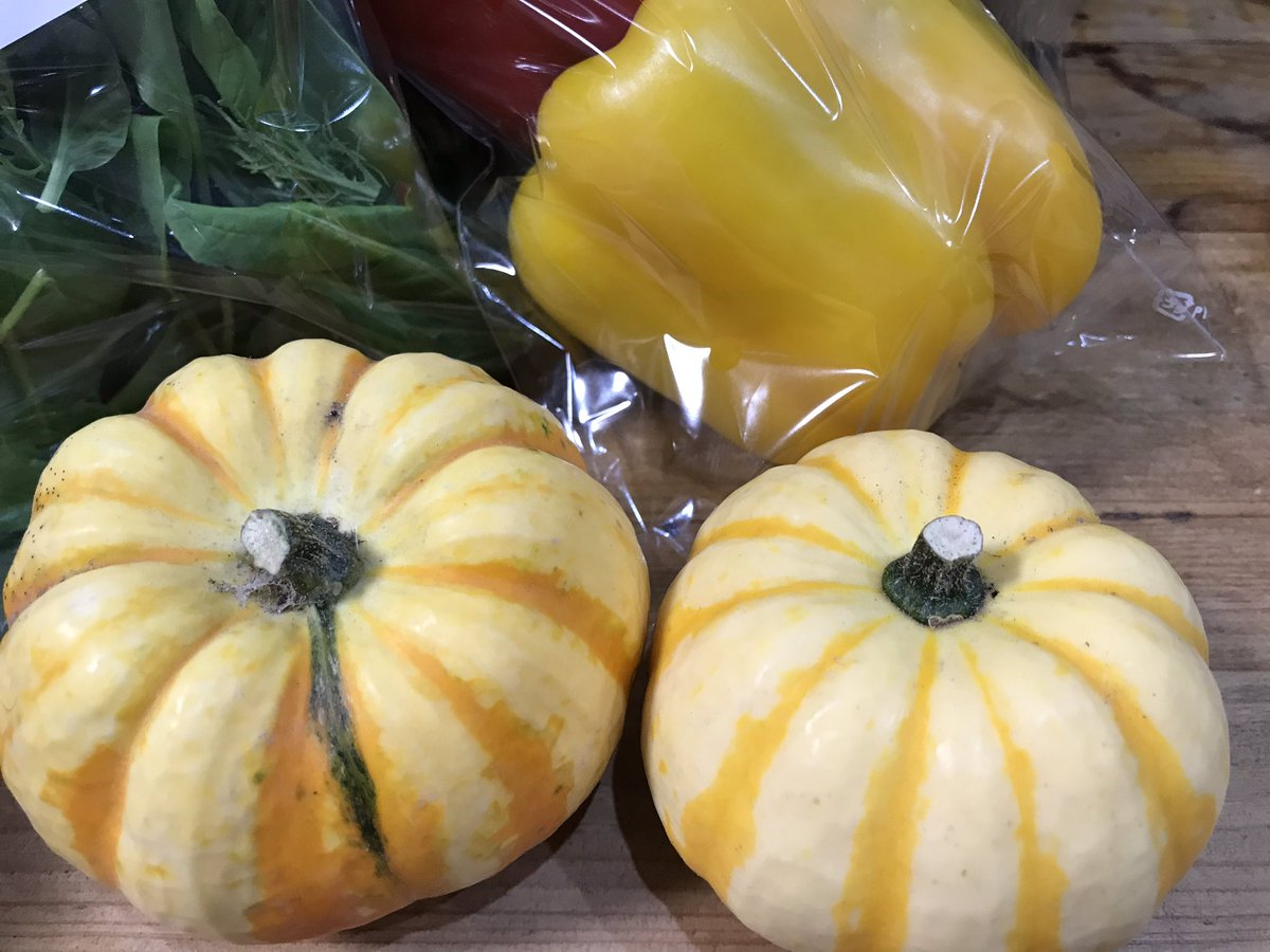 【農園たやのお野菜】秋もワクワクおまかせ便❣️形が可愛くてしばし飾っていた、プッチーニかぼちゃを生でラペ(薄切りサラダ)にしました。綺麗な黄色の前菜に💕「プッチーニかぼちゃと干しいちじくのラペ」レシピは↓#農園たやのお野菜