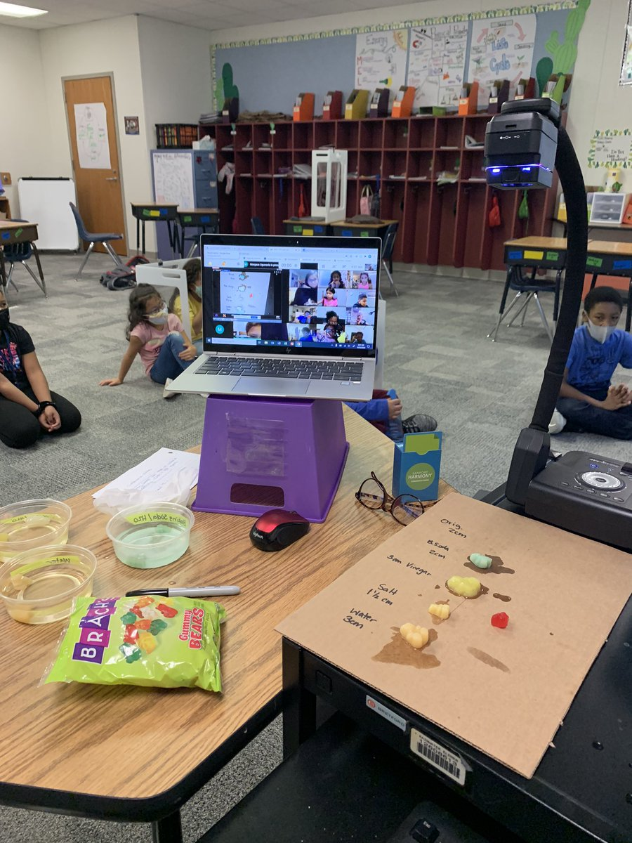 Conducting Science experiments both virtually and in person. @CFBISD @CFBRainwater @christy_clain