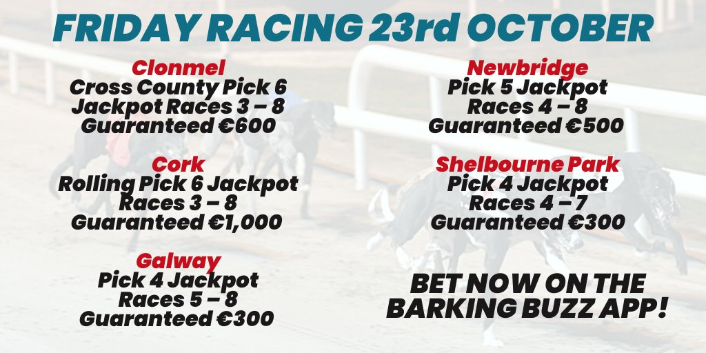 Newbridge betting online william hill mobile sports betting app