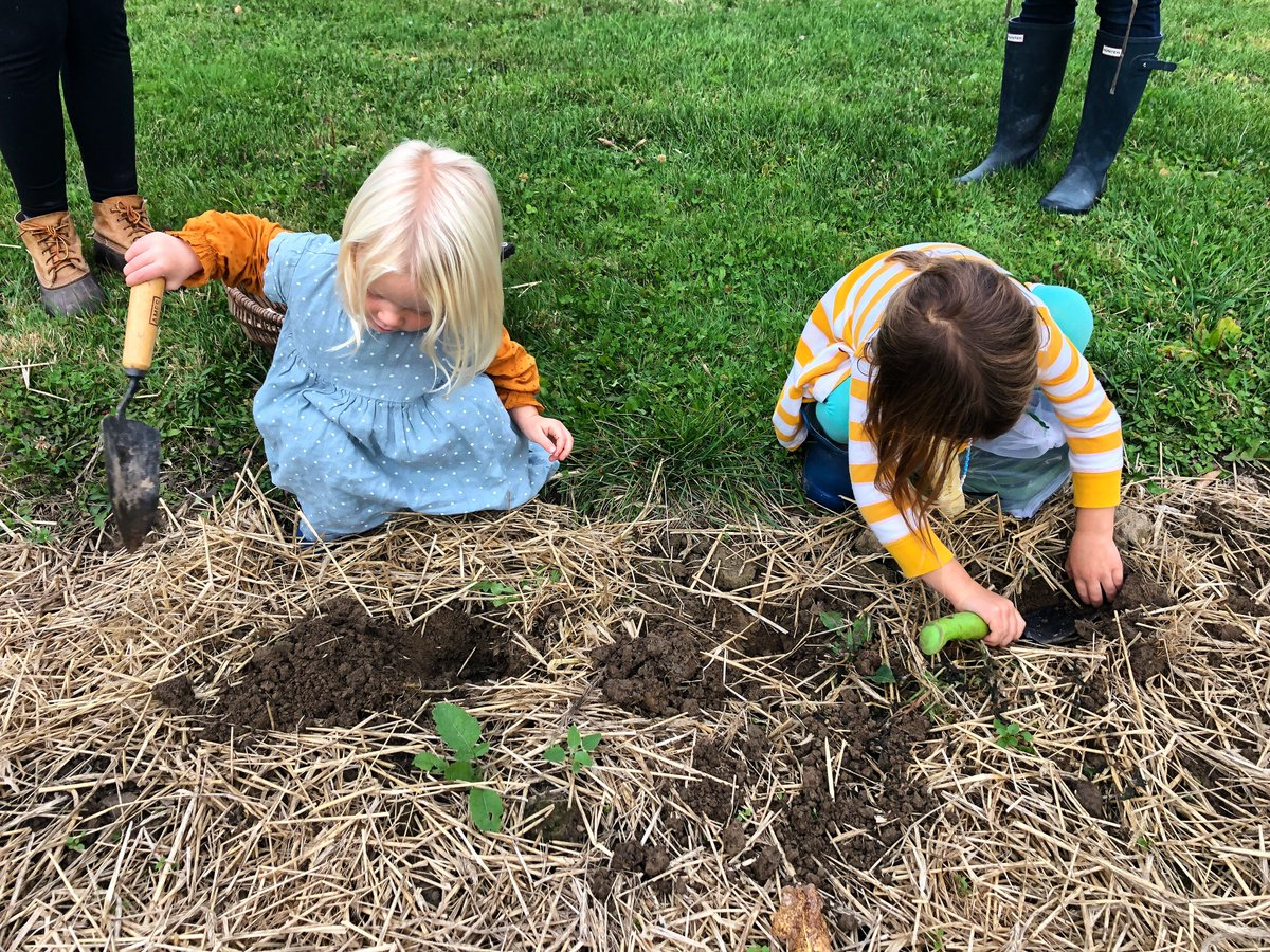 To connect with nature, learn about the different elements of growing food, while developing cooking skills allow for a better understanding of the impacts of our food choices. #farmtoschool #farmtoschoolmonth #farmFriday https://t.co/YE3yFIAd2m
