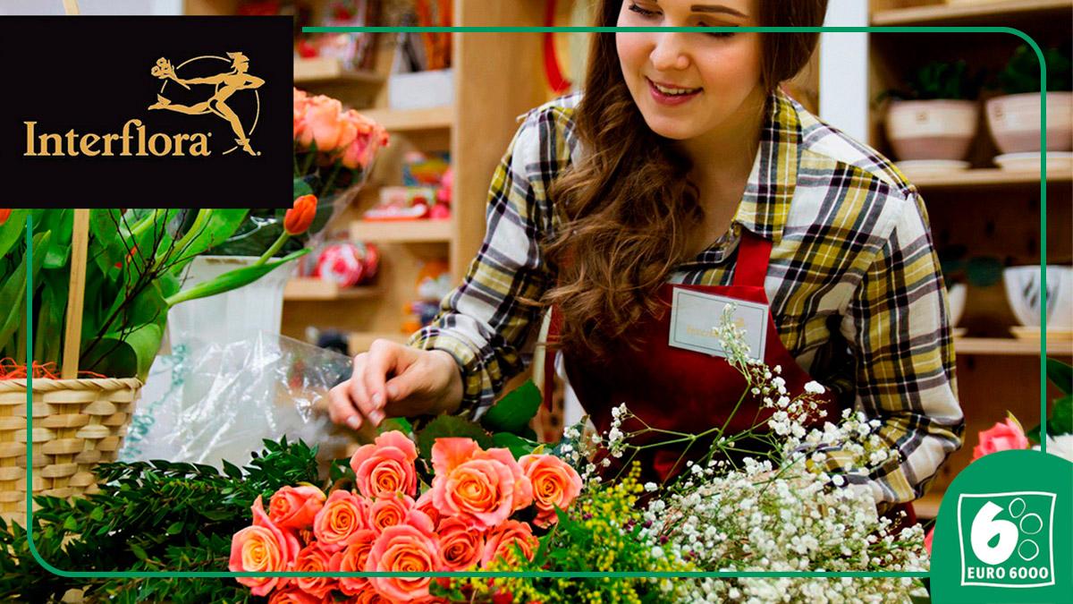 ¿Algo más bello que un ramo de flores?💐 sí, regalárselas a una persona especial🥰 Son el regalo perfecto y un complemento de decoración ideal 😇 Ahora pagando con tu tarjeta #EURO6000 y gracias a @interfloraes obtendrás un 15% de descuento 👉 https://t.co/ArCFVhg5Fe https://t.co/pSf6JYHzZ0