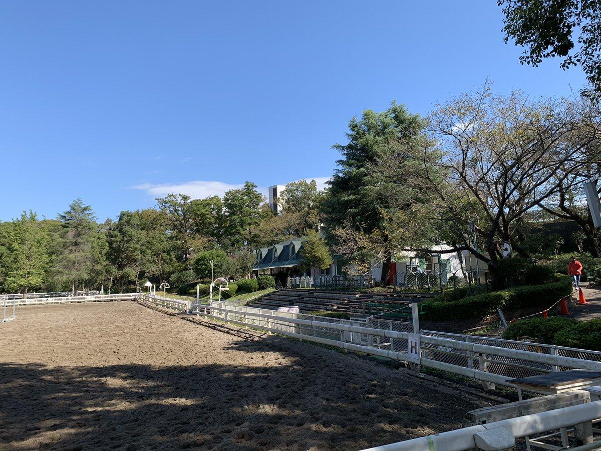 久々のお天気なので森林公園へ。 練習していたお馬はいたけど近くには行けず残念😭 ポニーに人参🥕をあげられるイベントがあるけどお子さんたちも来ていたしここはぐっと我慢😭  #森林公園 #ポニーセンター https://t.co/vrpmMkgXMw