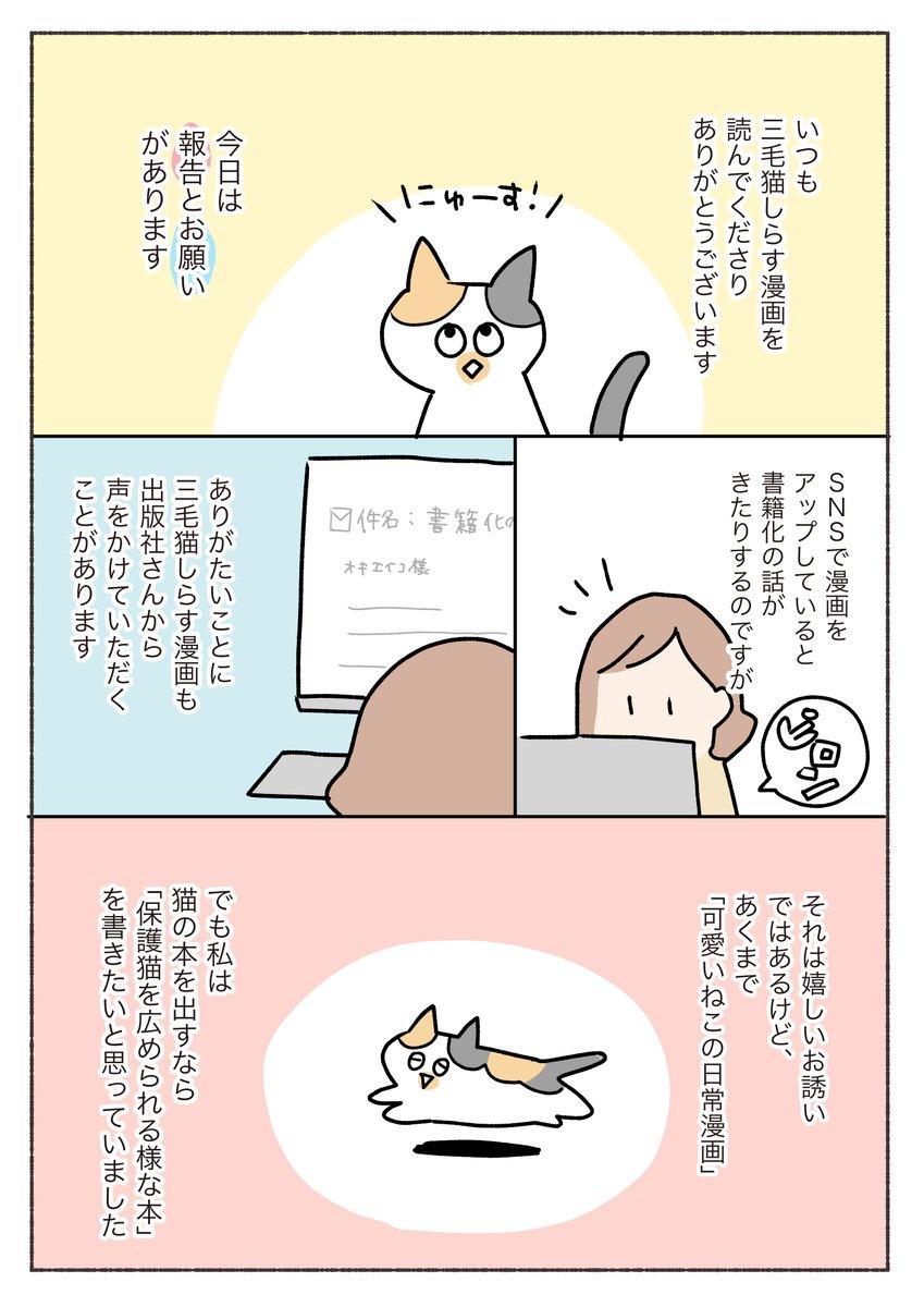 【ご報告とお願い】三毛猫しらす漫画を見てくださる皆さんへ、うれしい報告と切実なお願いがあります…!