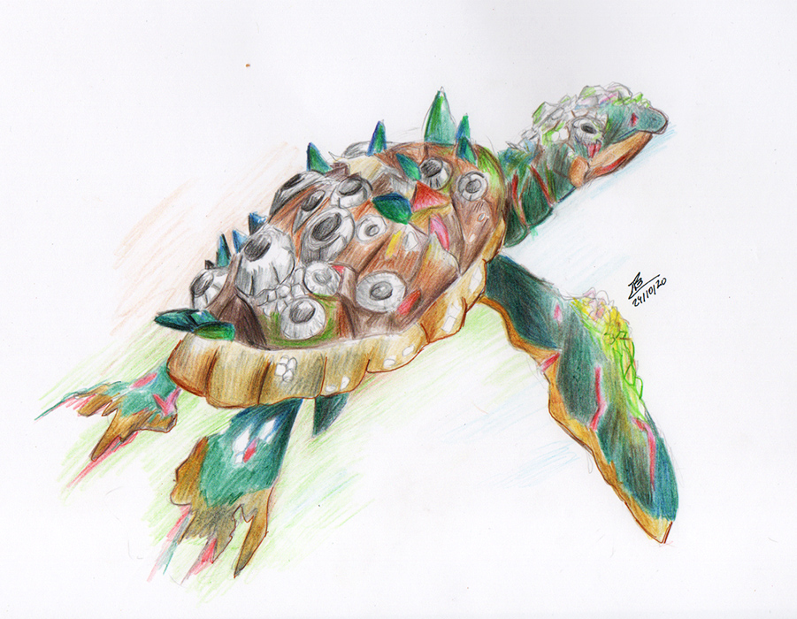 Day 24- Infected Baby Sea Turtle #traditional #colors #spooptober #barnacles #turtle #ウミガメ #感染 #色鉛筆 https://t.co/8MIIhCf6yE https://t.co/KUk8LNgJL4