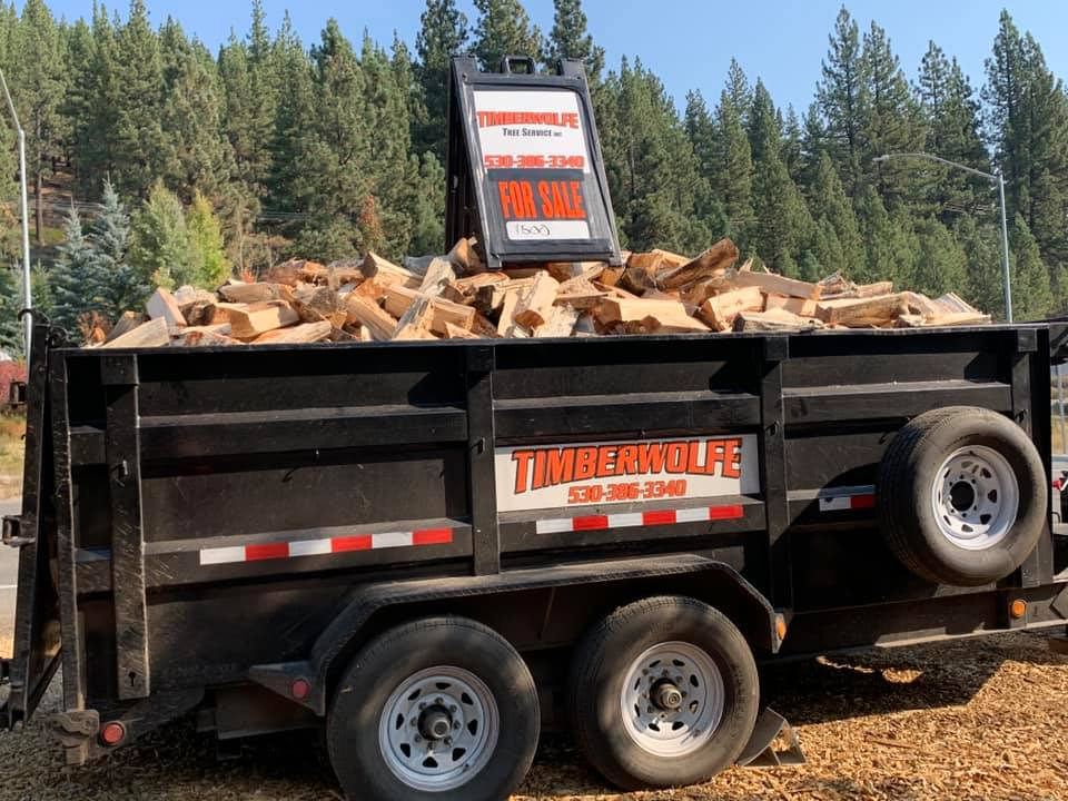 It's time for winter prep! 2 1/2 cords of mixed pine with FREE delivery in Truckee. We answer the phone 7-days a week. Call for our latest deal (530) 386-3340  #Truckee #LakeTahoe #DonnerLake #TahoeDonner #TimberwolfeTreeService https://t.co/8TtCEj4GWN