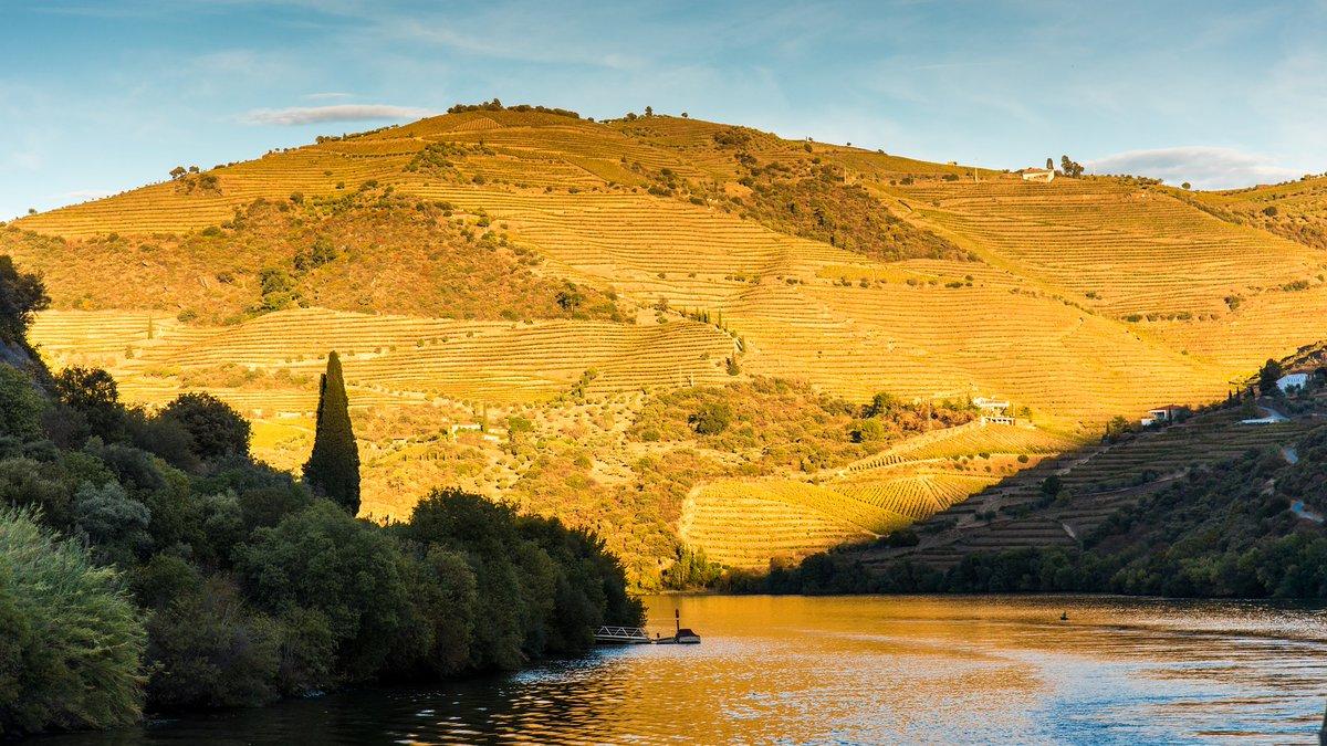#Duoro #River #Portugal https://t.co/B4xrlRX6Ax