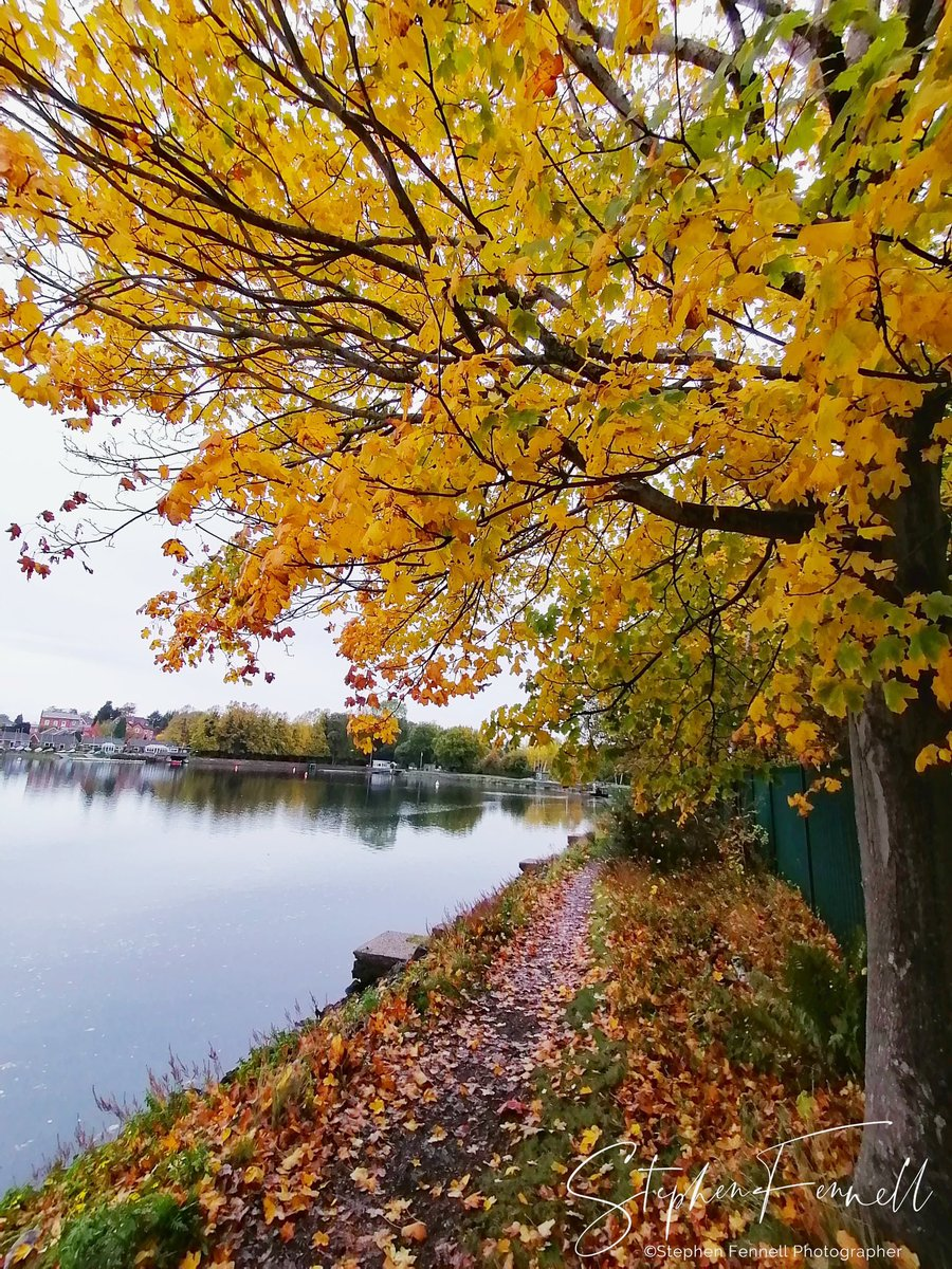 Good Morning #Solihull, have a great weekend!  It will be a breezy and mostly cloudy day with showers. Rain could be heavy at times. Highs of 15°C & Lows of 7°C   (Image: #Olton Mere - Stephen Fennell). https://t.co/BCNWlTK0X3