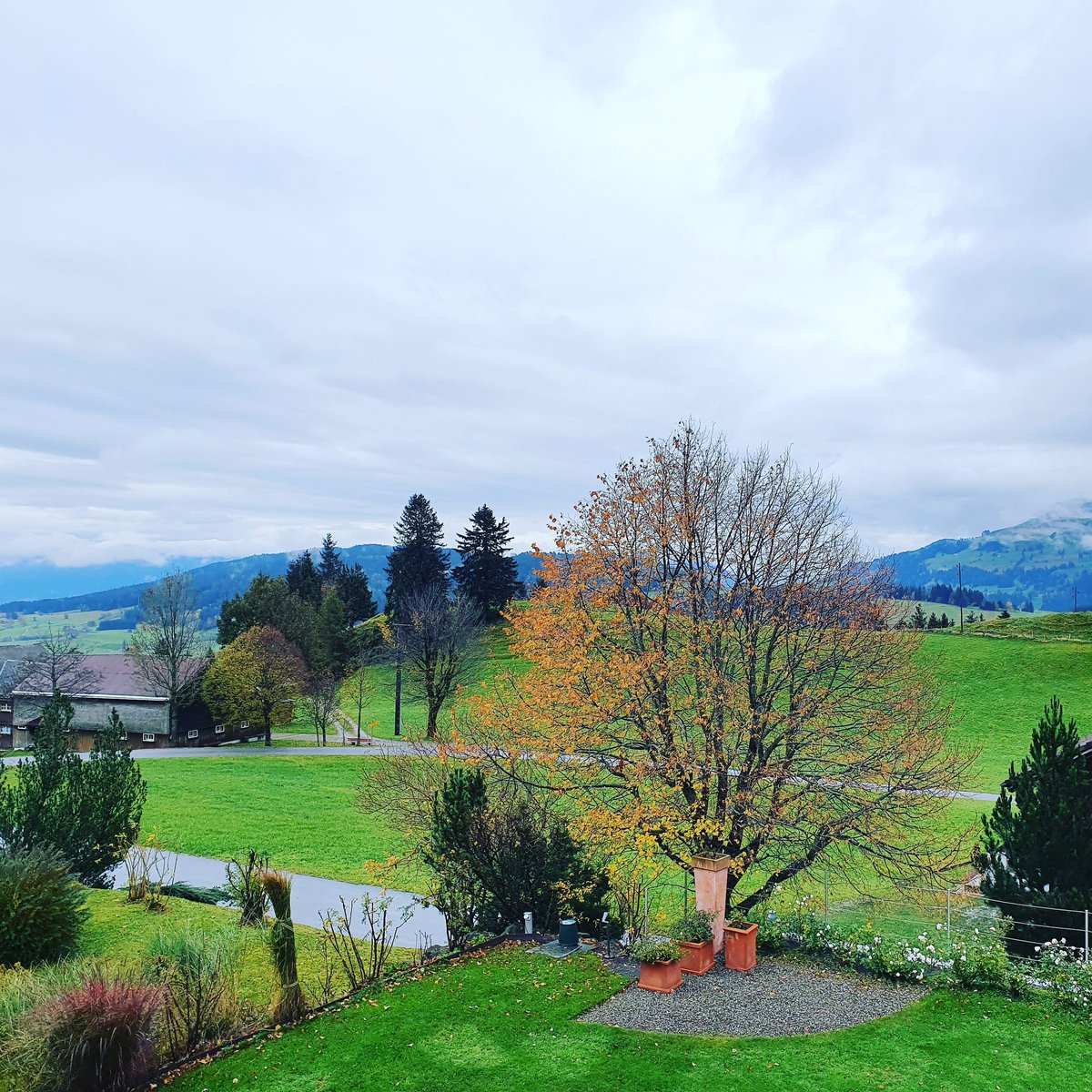 Good morning... #brenden #swissmeteo #appenzell #alpstein #switzerland #pfeffermintze #brendianer #likethatview #goodmorningpost #newday #landscapephotography #prettysky #ortderliebe #ortderlust @srfmeteo https://t.co/YYQBvkvgRZ