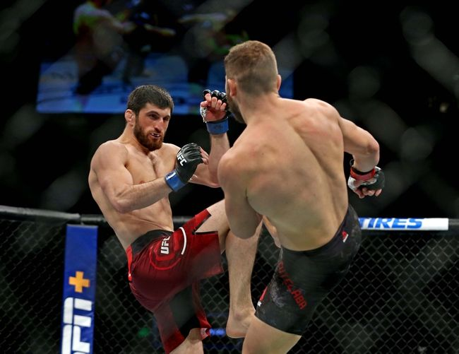 UFC 254: Magomed Ankalaev vs. Ion Cutelaba Picks, Odds, and Predictions https://t.co/oUmYYtH7zq #ufc #ufc249 #ufcfl #ufcjax #ufcfightnight #ufc176 #ufcvegas #ufc250 #ufcapex #gamblingtwitter #bettingtwitter #bettingtips #freepicks #espn #ufc254 #UFC254noCombate #bettingpicks #bet https://t.co/wpXvvkFdHf