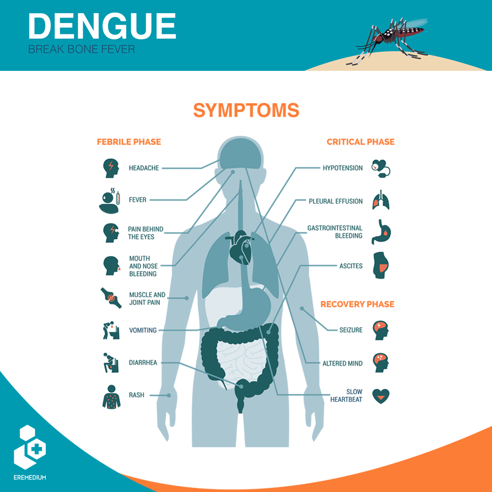 Dengue is an infection caused by a virus. You can get it if an infected mosquito bites you. Symptoms of Dengue usually begin about four to seven days after the initial infection and last for about 10 days.  #SwasthaBharat #TransformingHealth #DenguePrevention #mosquito https://t.co/89vHgDb5vu