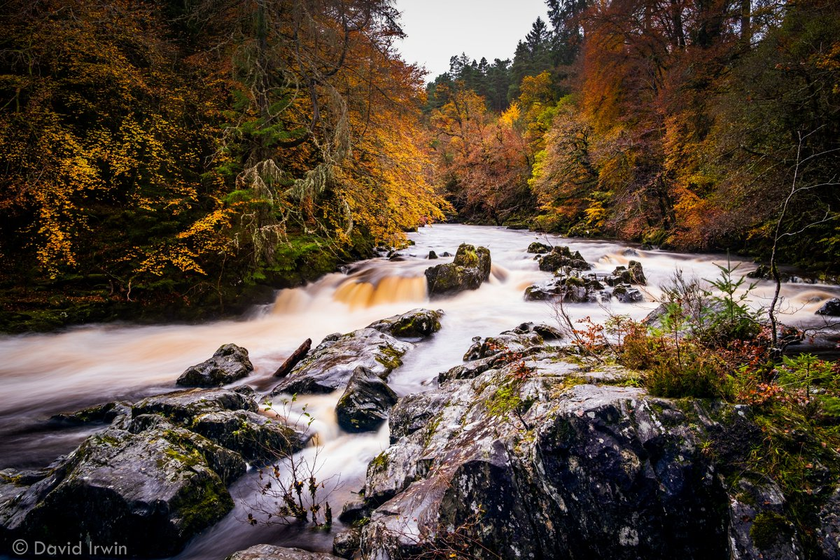 The Hermitage, Dunkeld. Perthshire. #Autumn #Scotland #River #Trees @VisitScotland @ScotsMagazine https://t.co/RdFEVClAfE