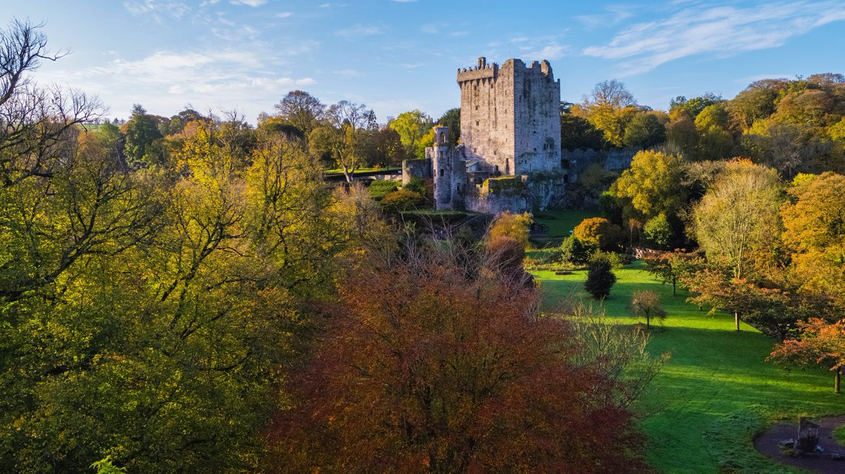 Autumn is putting on a spectacular show this year!! 🍂🍁  #staylocal #blarneycastleandgardens #purecorkwelcomes #cork #ireland #walks #like #follow #pictureoftheday #picoftheday #photography #autumn #autumnvibes #autumnleaves https://t.co/XpFhQdZ7NT