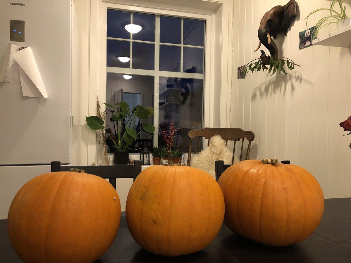 What should I carve it into?  Pumpkin carving stream tomorrow, please provide ideas below! https://t.co/1R7vPI72lR