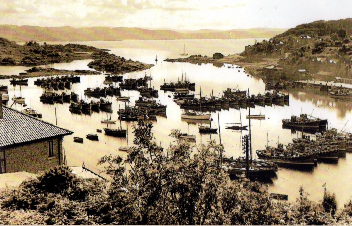 A beautiful image visually showing how many families relied on fishing, not just in Tarbert but around the Clyde. We've lost alot of this, but we wld love to see our sustainable fishing communities have a future #coastalfishing #inshorefishing #clyde #fishing #westcoast #scotland https://t.co/FDvryidqw0