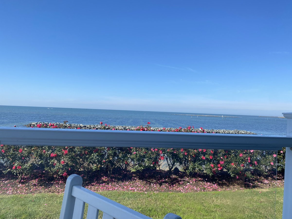 My view for lunch. What an amazing place