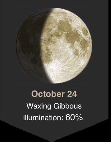 A week before the full blue moon of Halloween🌙🎃🌻👻🍂! #observethemoon #moonphase #october #autumn https://t.co/V6IJYnY5YU