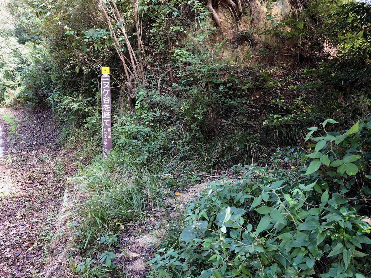 石楠花山 ヌケ谷入口 撮影日:9月19日 撮影場所:神戸市北区山田町上谷上 ここから一旦、標高を下げるヌケ谷というコースへ入ります。 https://t.co/NCVQLOt0ux https://t.co/5Mp71xZTEr