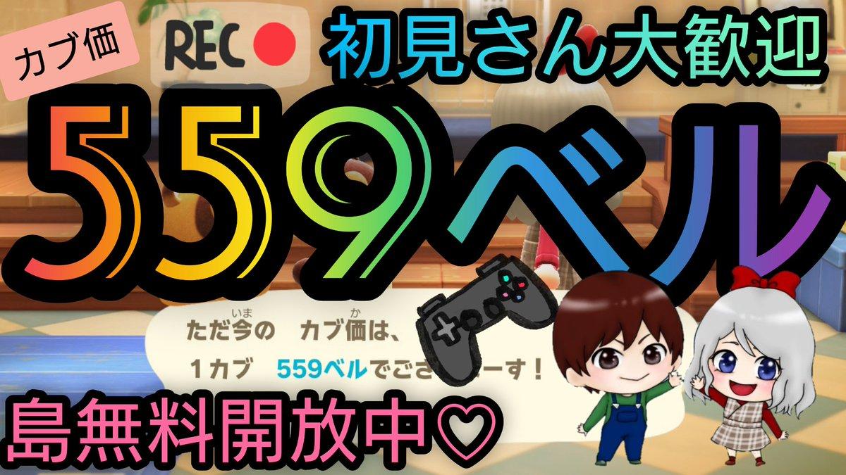 株価500ベル