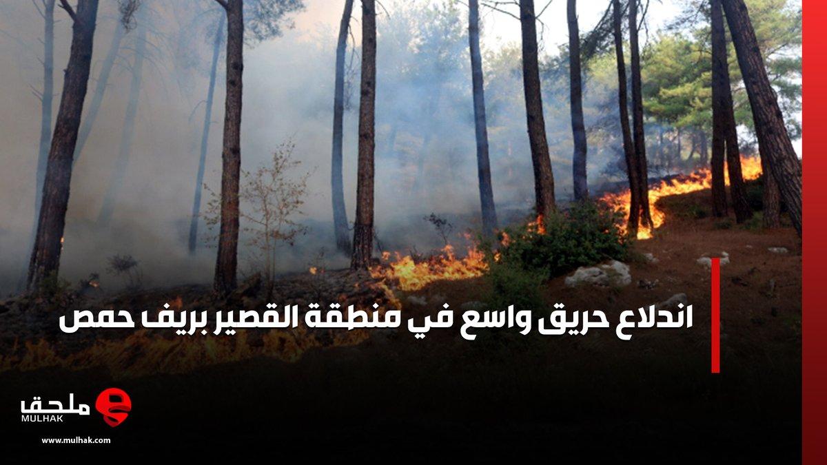 اندلاع حريق واسع في منطقة #القصير بريف #حمص https://t.co/lQlvCD5Bje #ملحق #سوريا https://t.co/HNUBd5m9KW