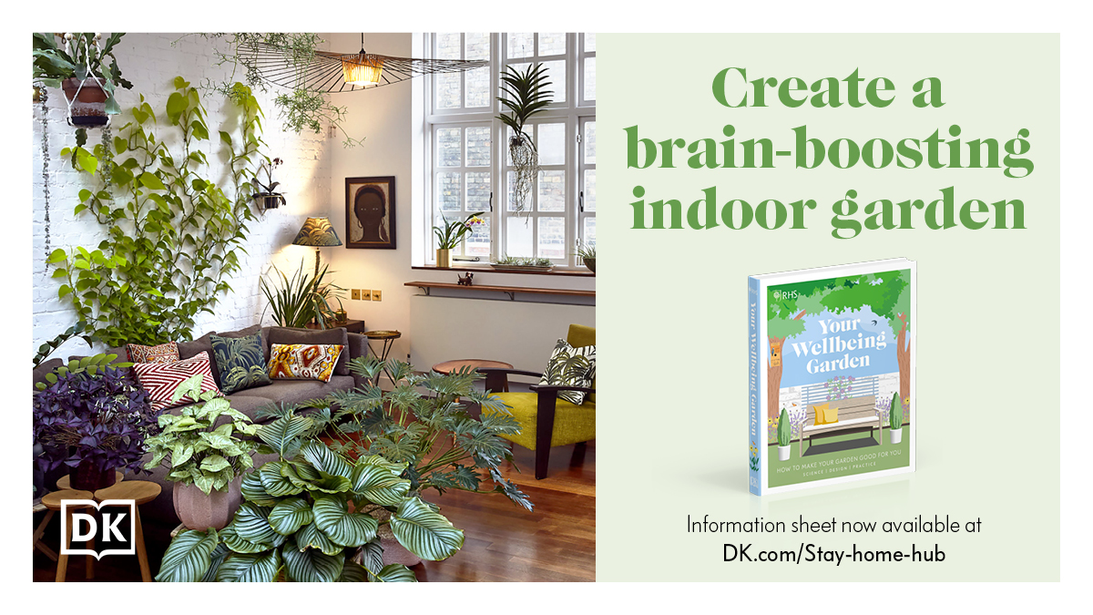 Turn your WFH office/kitchen/living room into a tranquil green space, with plants that actually HELP you feel good and think better! 🌱 https://t.co/2PLU80Qb48  @The_RHS #dktotherescue #staycurious https://t.co/5IfTvIQ82S