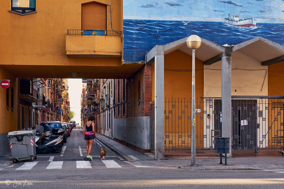 Dog walk on wheels #skating #dog #barcelona #city #street #streets #streetphotography #streetphotographer #urban #urbanlandscape #urbanphotography #socialphotography  #documentaryphotography #documentary #photooftheday #picoftheday #photography #photographer #PhotographyIsArt https://t.co/7tFJFtTC3f