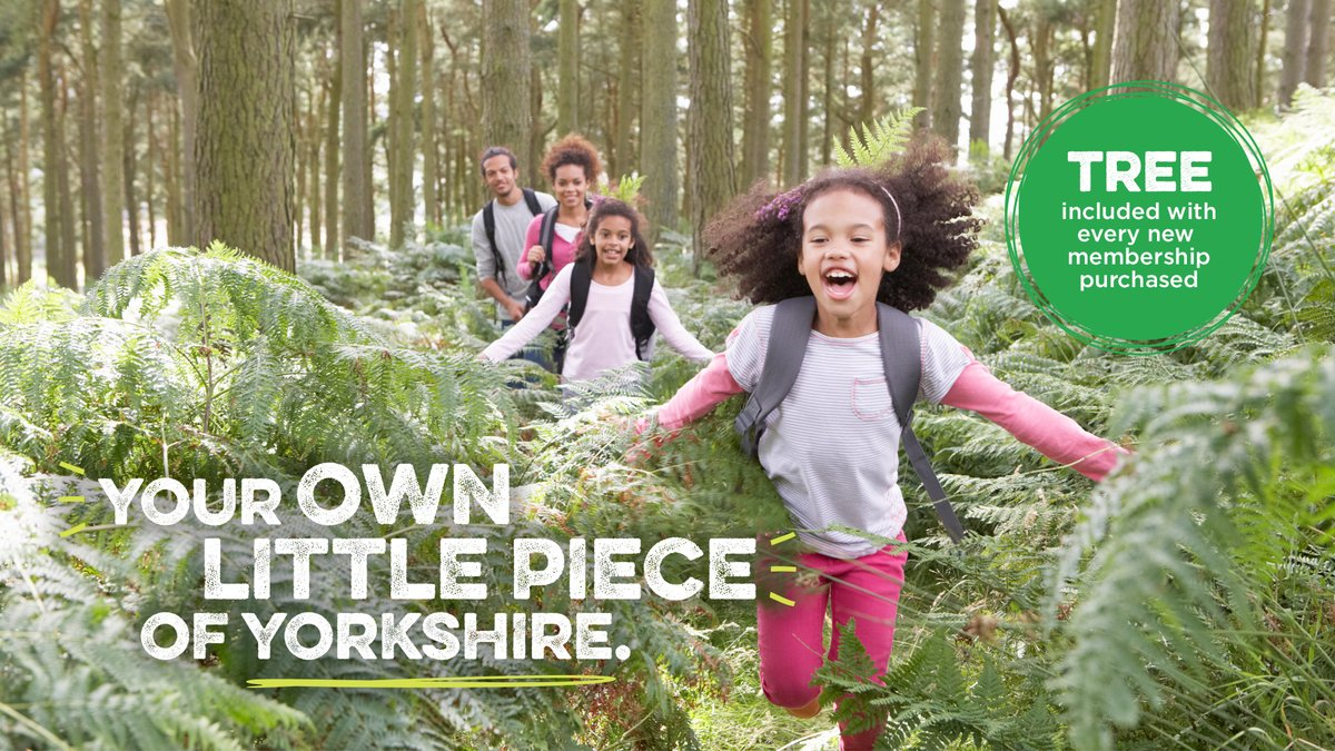 Become a My Y member and you can get a tree planted for you or a loved one right here in Yorkshire. Weve heard some heartwarming dedications since starting this initiative. Read some of these amazing stories here: yorkshire.com/become-a-membe… #MyYMembership #TreesForYorkshire