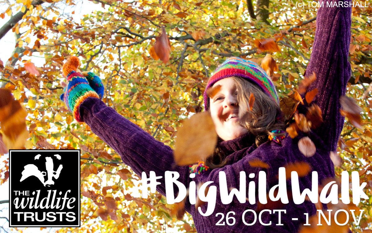 The #BigWildWalk starts TOMORROW 😱 There's still time to sign up and be a wildlife hero 🦸🦸♀️ https://t.co/BMnY3j0TUT https://t.co/hG1b5AN0R8