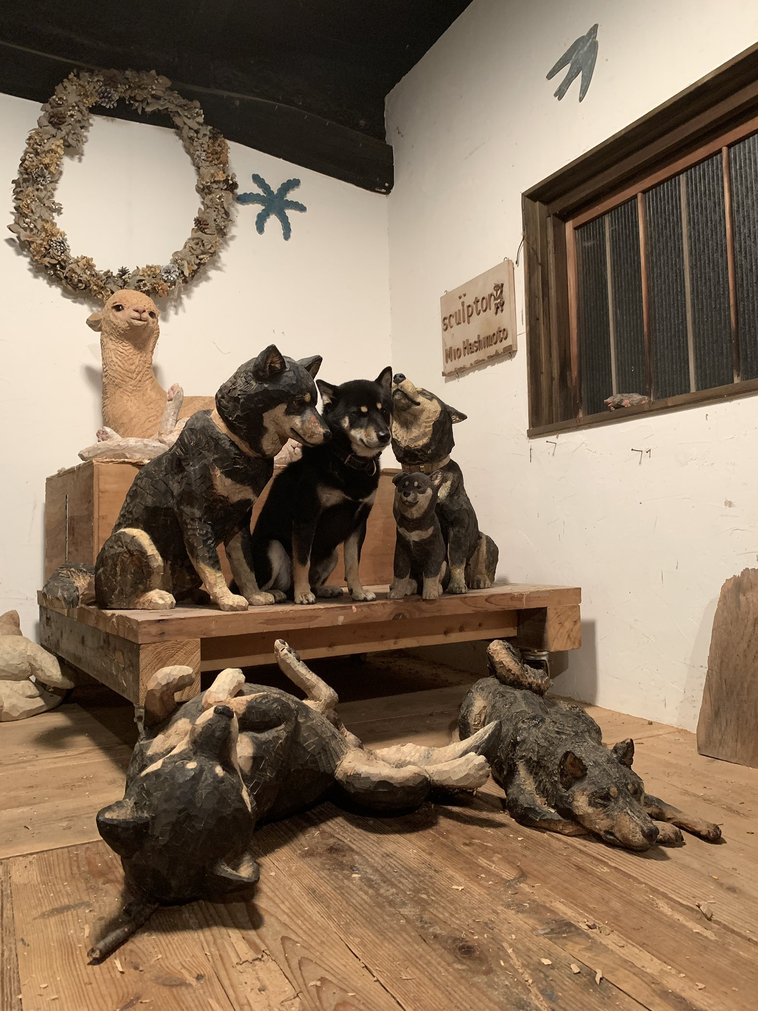 木彫りの黒柴たち01