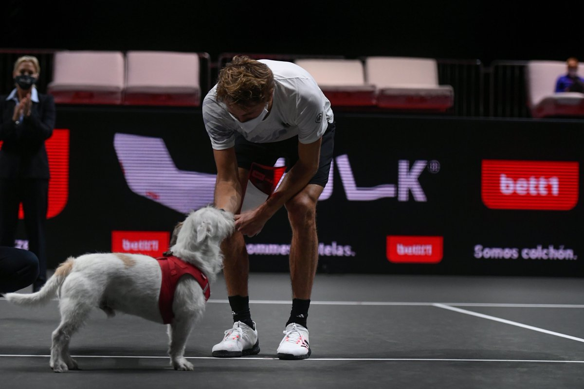 18/10/20 d. Auger-Aliassime 6-3 6-3 25/10/20 d. Schwartzman 6-2 6-1   Two brilliant performances when it mattered most for @AlexZverev at the @bett1hulks! 🇩🇪 https://t.co/5qCXdWhlsY