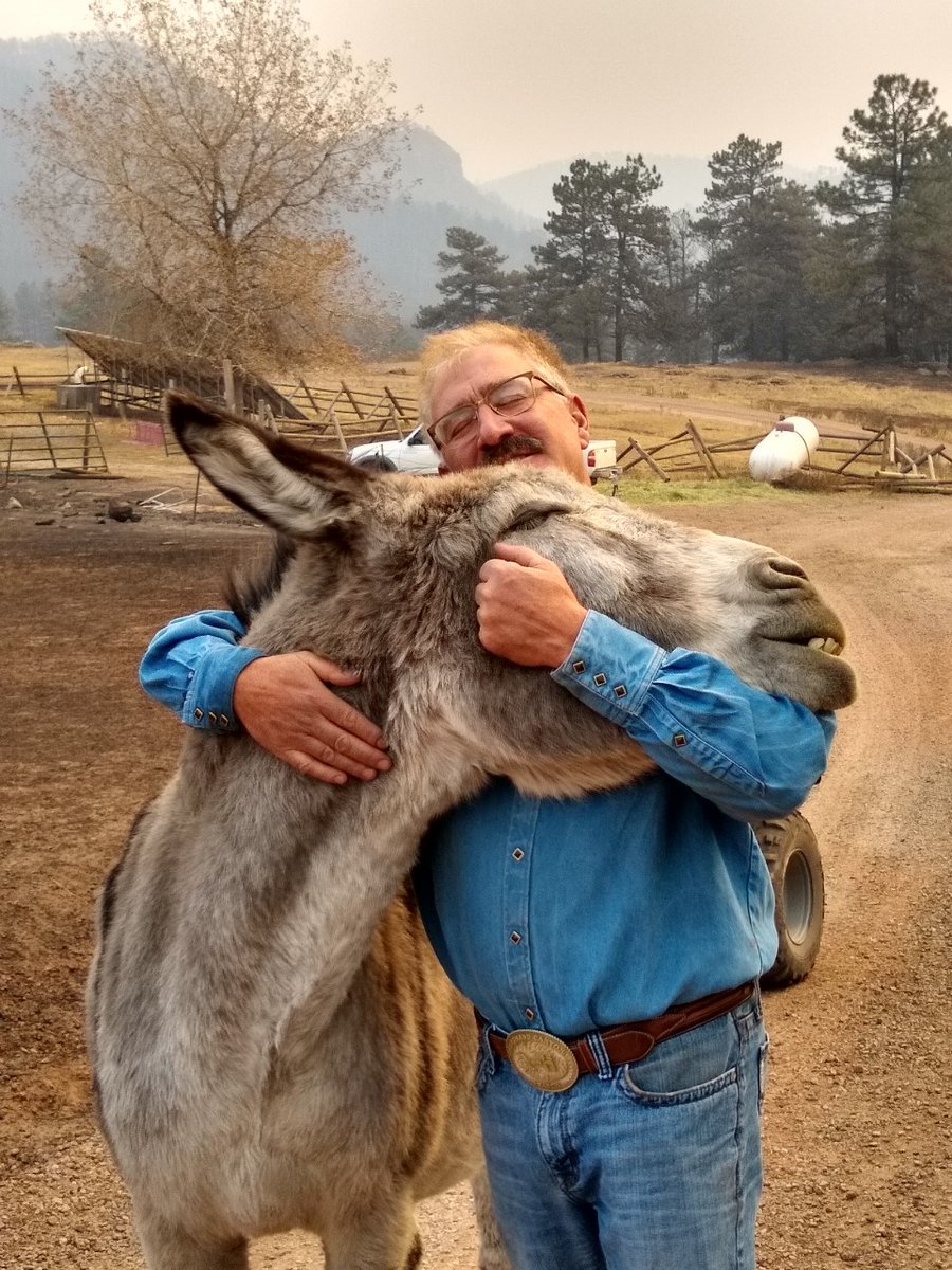 Travis Ochs, a Boulder County man who was reunited with his donkey Ennis after escaping the #CalWoodFire https://t.co/AvdBz1Fh0h