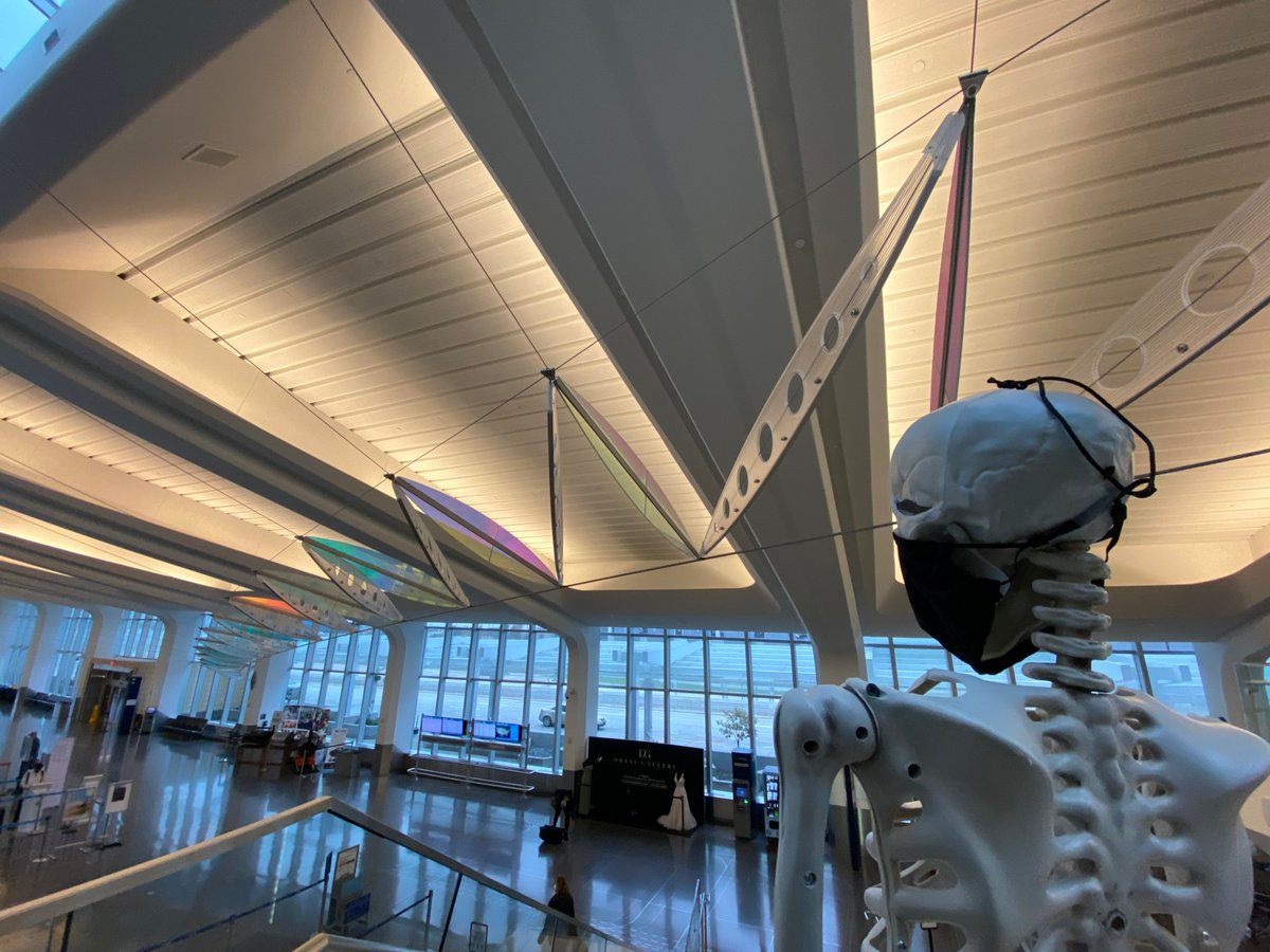 Red took a break to admire the beautiful skullpture in the terminal! #RedSkeletonICT #AirportTwitter https://t.co/7JIDRkomjp