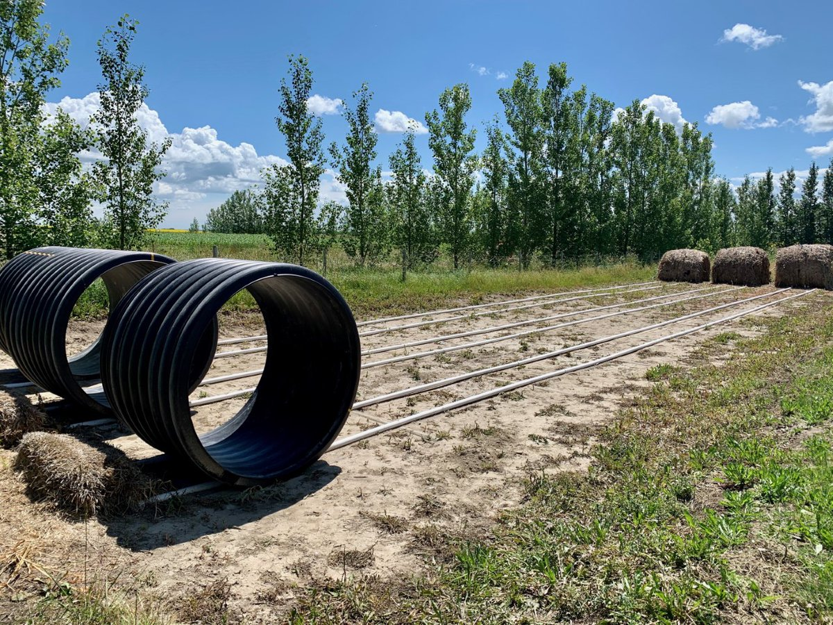 Xplornet's District Manager in Alberta South, A.J. Struyk, took this photo of one of his family's favourite rural pastimes: Rat Races! Similar to a hamster ball, the participant runs in-place and races against a friend or family member. #RuralAlberta https://t.co/EjBzIGJ2FP