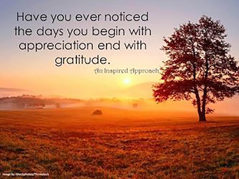 Right on...#everyoneisinvited to #Enjoy this #SundayFunday, #Appreciate #everyday #life #today! ✌️❤️😎  #SundayThoughts #gratitude  #quotes #sundayvibes #positive #sundaylive #inspiration #SundayMotivation #InspirationalQuotes #Sunday #BlessedAndGrateful #ThinkBIGSundayWithMarsha https://t.co/woWvKYh3X1