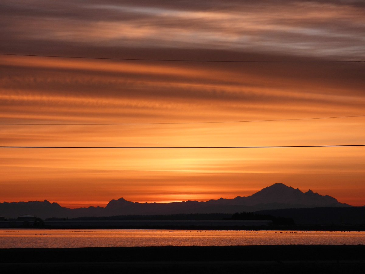Delta dawn - Sunday 25 October 2020 - mount Baker on the horizon - have a wonderful day everyone! Stay safe, stay warm!! Be kind always and please respect nature and wildlife! 😊👍👊❤️✨ #exploredelta #sunrise #dawn #viawesome #vancouver #canada #mountbaker #nature #explorebc https://t.co/UlwNfIR80I