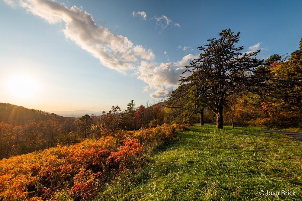 Golden hour at @ShenandoahNPS #ShenandoahNationalPark #nps #goldenhour #nature #NaturePhotography #naturelover #landscapephotography #landscape #nikon #nikonphotography @edayphotos @HarmonyMindBody @ThePhotoHour @StormHour @scenicvirginia @VisitVirginia @NikonUSA @VisitShenCoVA https://t.co/1dIkyTEcIA