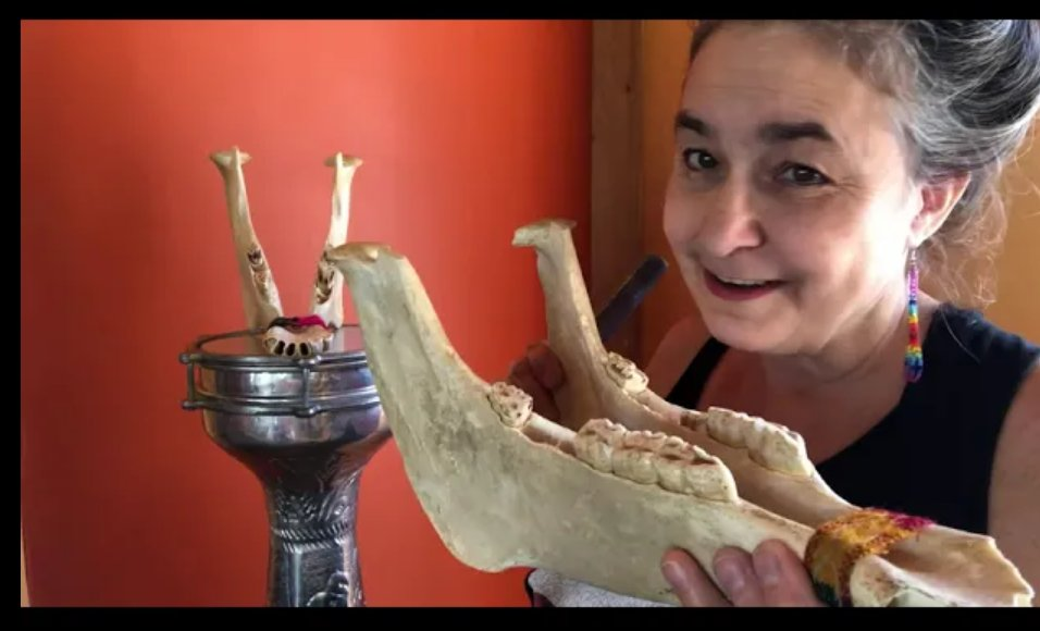 What is the world's spookiest instrument?  We think it's the #Quijada jawbone of a donkey rattle. Learn more at the #Music #Museumonline! #Halloween #DayoftheDead  #Musicalinstrument #musicTeachers #Musicclass #percussion  https://t.co/MNvfMO0J6D https://t.co/ZO00hT4yXK
