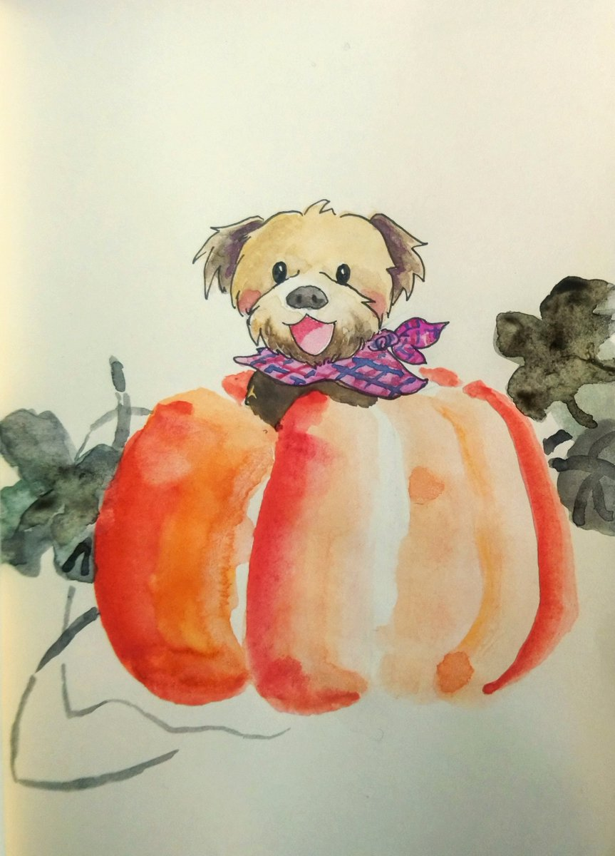 #inktober2020 Day25 #pumkin . . See more illustrations and art at my instagram:  @fallforrandom  . Commission ON! at https://t.co/1d5bygc9is . . #animaldrawing #doodle #dog #autumn #watercolour #水彩 #drawings  #落書き #イラスト #chinesestyle #illustration #cuteillustration https://t.co/EaQOMDDAbi
