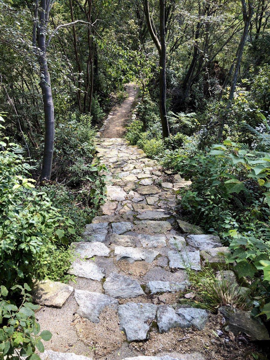石楠花山 ヌケ谷(その2) 撮影日:9月19日 撮影場所:神戸市北区山田町下谷上 下って間もなく、石畳の階段が整備された綺麗なコースとなりました。 https://t.co/9pm9DH0Smq https://t.co/BRX5Y2QXMP