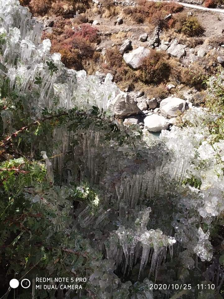 Ice crystal at mana , Indian last village .  #Snowdrop #Uttarakhand #uttarakhandheaven #chardham #badrinathdham #badrinath #trekking #mountainview #positivevibesonly #naturelovers #morningmotivation #morningvibes #trekkinglovers https://t.co/9jws7UWUss