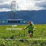 New podcast series💥The 1st 'Digging In' episode is about #Tully's sugar industry - from canecutters & mechanisation to green #cane harvesting, #fallow crops, drains as mini #wetlands and compost trials: https://t.co/XWyD1l8KYG  @QldEnvironment @CANEGROWERS #waterquality