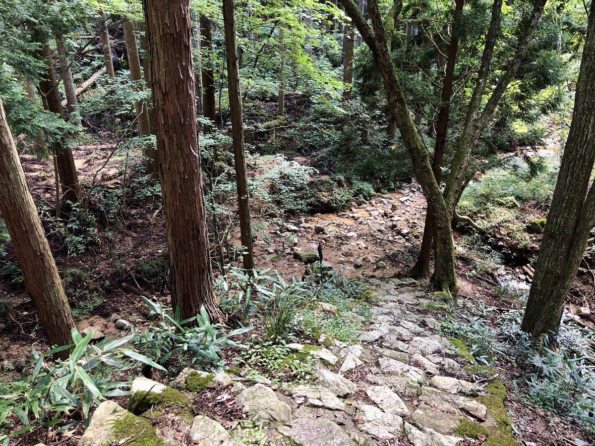 石楠花山 ヌケ谷(その3) 撮影日:9月19日 撮影場所:神戸市北区山田町下谷上 石畳が途切れて、谷の底へ向かいます。 https://t.co/aOkhsnaWsW https://t.co/z2FuQa4EoV