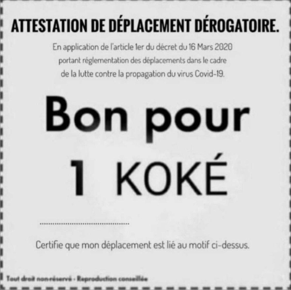 Attestation de déplacement dérogatoire pour un Koké lors du couvre feu voilà me remercier pas 😘🤣 https://t.co/yzAmy0S0W0
